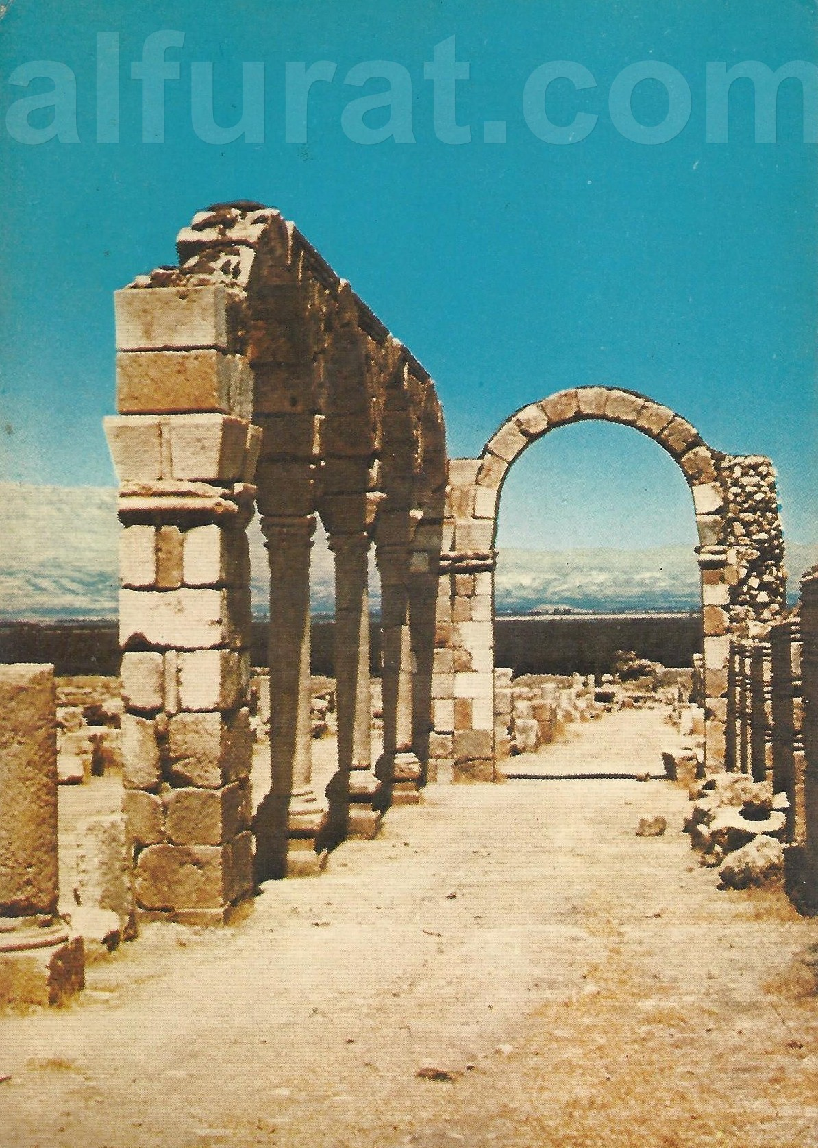 Anjar -  Remains of the Market Place 32