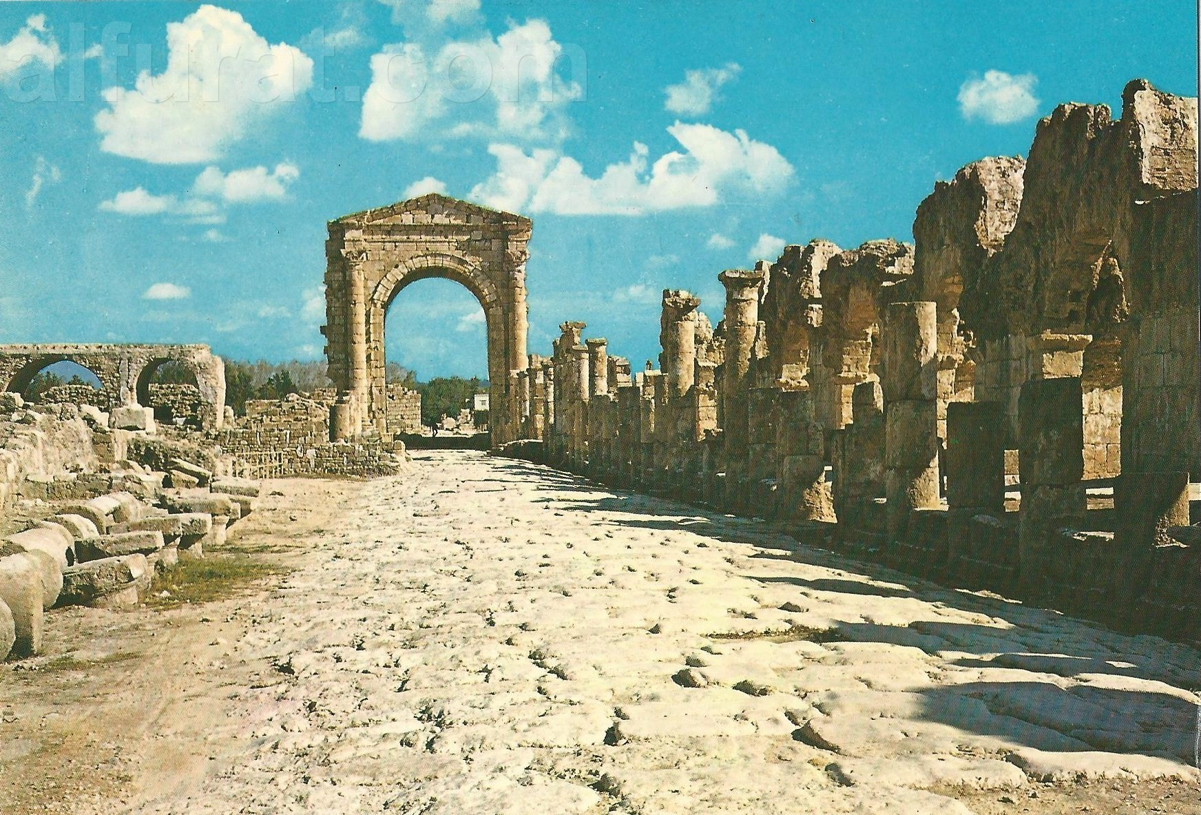 Tyre - The Arch of Triunph 172  صور