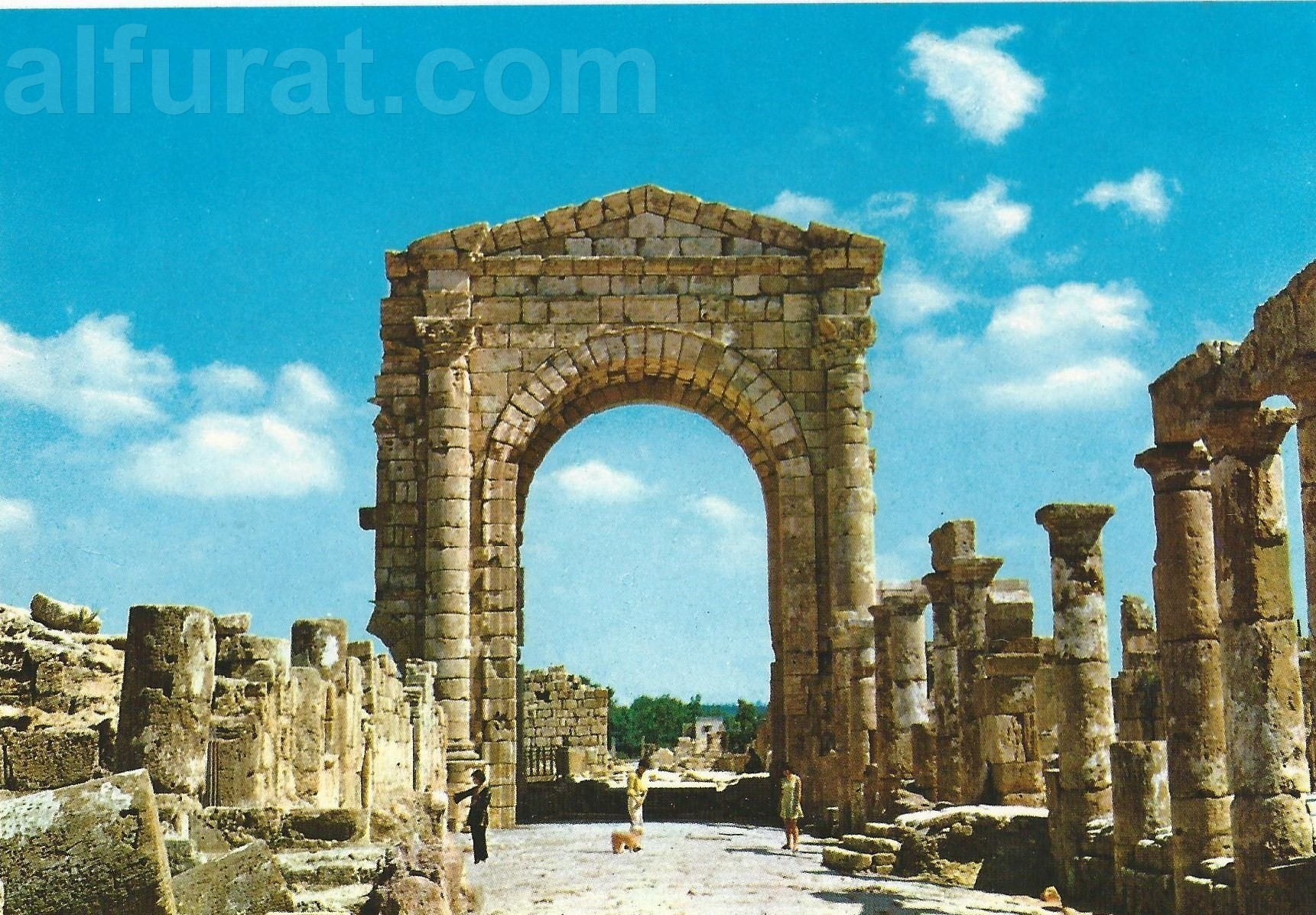 Tyre - The Arch of Triunph at Necropole 528 صور