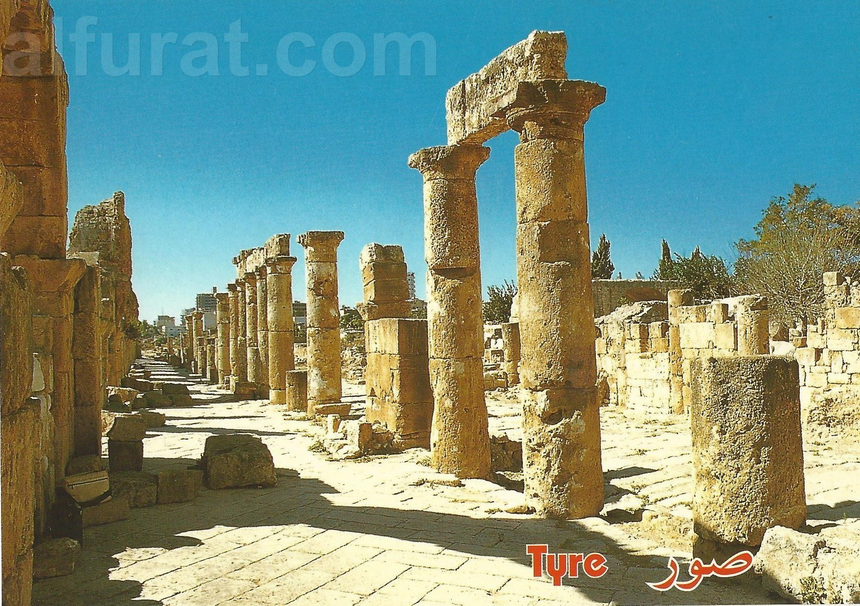 Tyre - The Roman Road and the Colonnade C 942   صور